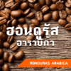 เมล็ดกาแฟ ฮอนดูรัส อาราบิก้า