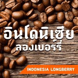 เมล็ดกาแฟ อินโดนิเซีย ลองเบอร์รี่
