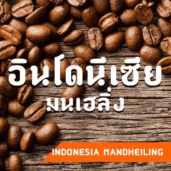 กาแฟแมนเฮลิ่ง อินโดนีเซีย สุมาตรา