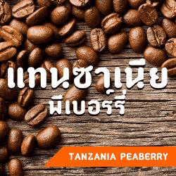 กาแฟแทนซาเนีย พีเบอร์รี่